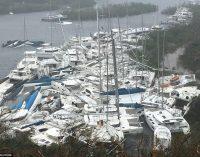 Trước và sau khi siêu bão Irma càn quét qua