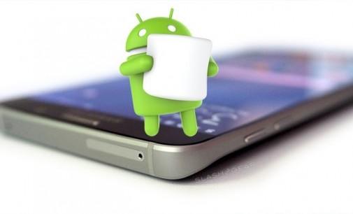 Android giờ là mồi ngon của virus