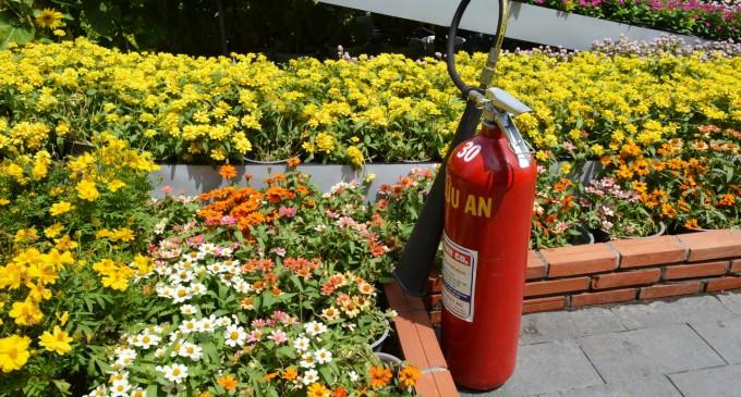 Bình cứu hỏa giữa ngàn hoa