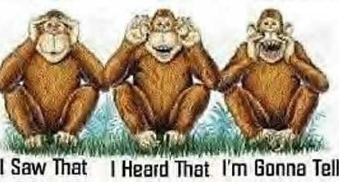 Năm Thân đối diện Khỉ