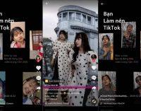 Những xu hướng hàng đầu trên TikTok Việt Nam tháng cuối năm 2020